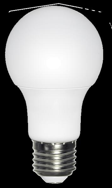 LED LEUCHTMITTEL NICKEL MATT, 2XE27 LED
